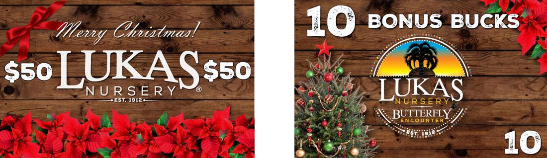 Christmas-Gift-Card-Promo
